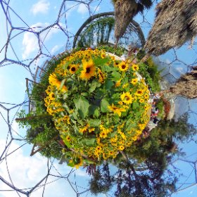 I haven't bored you with one of these for a while! Here with have The Eden Project last September #theta360 #theta360uk