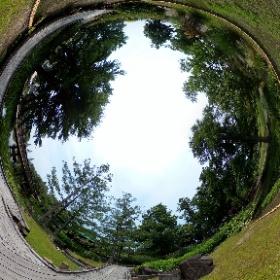 みずの森 2020/06/09