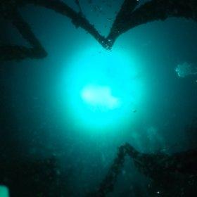真鶴岩ボートにて #theta360
