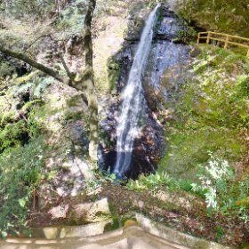 RICOH THETA Z1 2019.04.20 撮影 蜻蛉の滝(奈良県吉野郡川上村西河) F3.5 ISO100 #thetaのある生活 #THETAZ1 #theta360