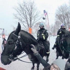 Black horses and policemen in Montreal #theta360 #theta360fr