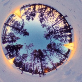Finland forest #theta360