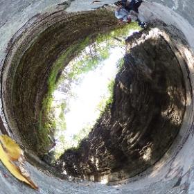 Visit Watkins Glen State Park New York State