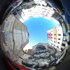 #streetart #visitoostende #ostend #roa  #theta360