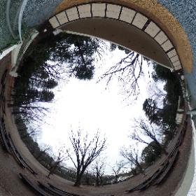 オカルティックナイン的な感じで井の頭公園も放浪してますがそろそろ帰ります。#オカン #theta360