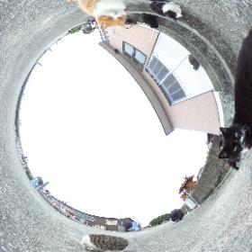 熊本県上天草のネコの島「湯島」にて。  Yushima is a getting famous cat Island in Amakusa Kumamoto Japan.  Almost 200 cats are living with people.  Photo by Cat photographer Kenichi Morinaga.  撮影 猫写真家・森永健一  #theta360