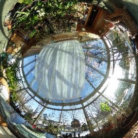 My conservatory.  Copyright by Dr Roisum, POVphotosplus.com, 2017. #theta360