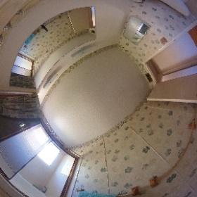 8590 Renown Dr - bathroom (upstairs)