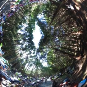 ジャパンカップサイクルロードレース2014、古賀志林道、プロトンの360。 #theta360
