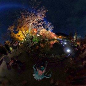清水寺夜間拝観にて。紅葉のライトアップが素晴らしかったので見てほしい(´∀`)  そしてミクさんかわいい #miku360