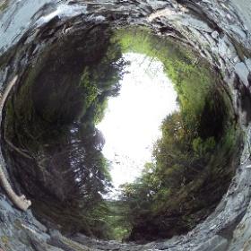 三軒岩小屋沢 - 上流側
