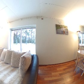 Testing the Theta360 for interiors  #theta360