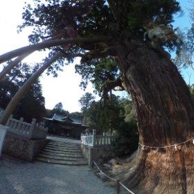 隠岐玉若酢命神社 #theta360