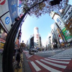 渋谷109を発見したミク #miku360 #theta360