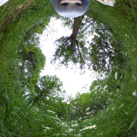 チノちゃんがTHETAを利用して外で360度画像の自撮りをしてみました。撮り方や注意点は↓に紹介しています。 https://dollphotography.net/pentax/?p=2763 #theta360