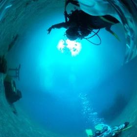 2020/02/06 大瀬崎・湾内 水中神社 #padi #diving #FLIPPER-dc #フリッパーダイブセンター #大瀬崎 #theta #theta_padi #theta360 #群馬 #伊勢崎 #ダイビングショップ #ダイビングスクール #ライセンス取得