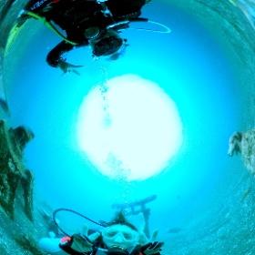 2021/07/14 大瀬崎 #水中神社 #padi #diving #フリッパーダイブセンター #大瀬崎 #theta #theta_padi #theta360 #群馬 #伊勢崎 #ダイビングショップ #ダイビングスクール #ライセンス取得 #padiライフ