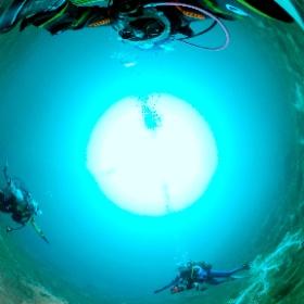 2021/03/07 淡島ボート #padi #diving #フリッパーダイブセンター #淡島 #theta #theta_padi #theta360 #群馬 #伊勢崎 #ダイビングショップ #ダイビングスクール #ライセンス取得