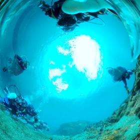 2020/11/28八幡野 #padi #diving #フリッパーダイブセンター #八幡野 #theta #theta_padi #theta360 #群馬 #伊勢崎 #ダイビングショップ #ダイビングスクール #ライセンス取得