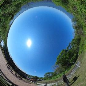 風蓮湖。 #羅臼たのしー #theta360