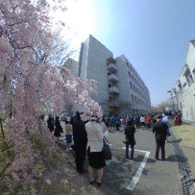 Entrance ceremony, Tama Art University.