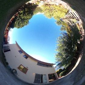 8590 Renown Dr - backyard