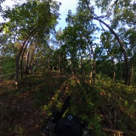 Morning sunshine near Jay, Oklahoma. #theta360