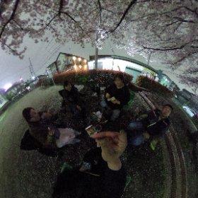 夜の花見はロマンティック~ #sakura3d #theta360