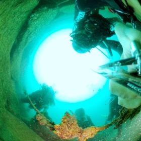 2021/09/05 平沢 #padi #diving #フリッパーダイブセンター #平沢 #theta #theta_padi #theta360 #群馬 #伊勢崎 #ダイビングショップ #ダイビングスクール #ライセンス取得 #padiライフ #カエルアンコウ