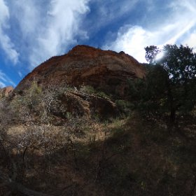 Zion morning hike, can you find the 3 Bighorn Sheep