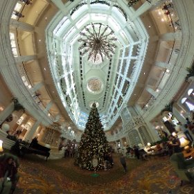The main area of the Grand Floridian, from the other side of the tree 😊 #theta360
