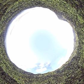 黄金山 2019.07.19 黄金山登山口から空撮360°パノラマ