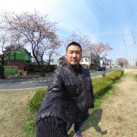 六実の桜 #theta360