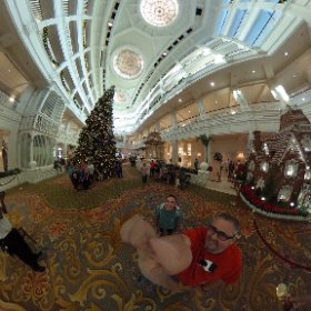 Take a tour around the main room in the Grand Floridian! So much Christmas! #disney #theta360