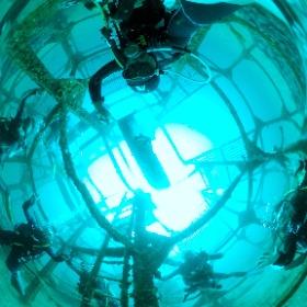 2020/08/29 初島、ダイワハウス #padi #diving #フリッパーダイブセンター #初島 #theta #theta_padi #theta360 #群馬 #伊勢崎 #ダイビングショップ #ダイビングスクール #ライセンス取得