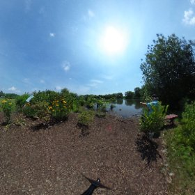 SCSU urban oasis West River hydrology site #theta360