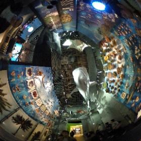 国立科学博物館 常設にも行って来た♪ 基本写真撮影OKってのが嬉しいね☆ その2 #theta360