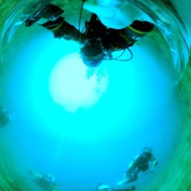 2021/04/03 静浦 #沈船 #padi #diving #フリッパーダイブセンター #静浦 #theta #theta_padi #theta360 #群馬 #伊勢崎 #ダイビングショップ #ダイビングスクール #ライセンス取得 #padiライフ
