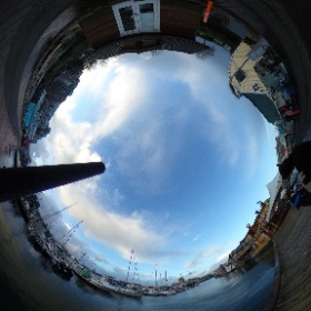 Wild Seals  at Fisherman's Wharf  recorded by   www.ThisIsMeInVR.com   #theta360