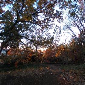 弘法松公園山頂からシータ #theta360