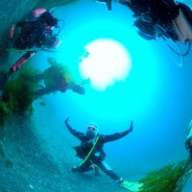 2019/04/06 OWD海洋実習@大瀬崎 #padi #diving #フリッパーダイブセンター #大瀬崎 #theta #theta_padi #theta360