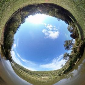 Stausee Möhringen in 360° ☀️ #TUTerleben #theta360