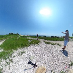 GLOBE field site at Hammonasset, site preview with Sharon, Kim and Sarah #theta360