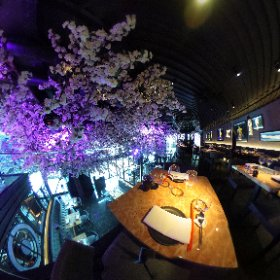 TATTU LEEDS: Take a look at the blooming spectacular blossom tree and upstairs seating area at the venue opening in East Parade, Leeds city centre on Friday, June 9, 2017. #theta360 #theta360uk