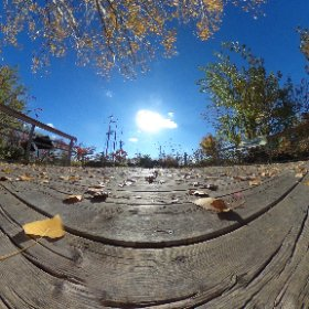 #rain3d enjoying the sun #theta360
