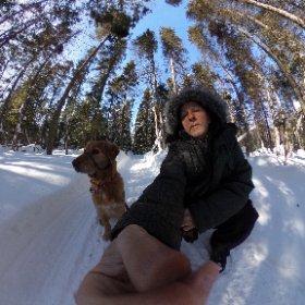 Promenade dans le bois !