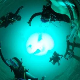 2019//10/26--27 大瀬崎・OWD&AOW海洋実習 #padi #diving #フリッパーダイブセンター #大瀬崎 #theta #theta_padi #theta360 #群馬 #伊勢崎 #ダイビングショップ #ダイビングスクール #ライセンス取得