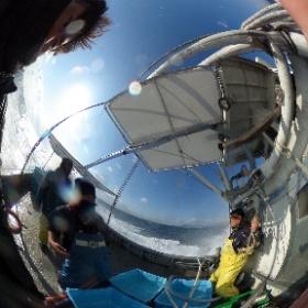 いかなご漁-垂水漁港へ向かう #大阪湾 #幸内水産 #いかなご