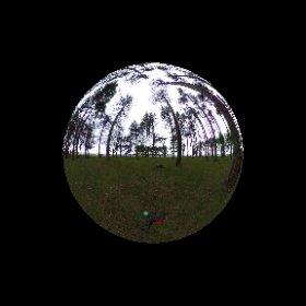 #mayhill #forestofdean #carolynblackart.com #theta360 #theta360uk