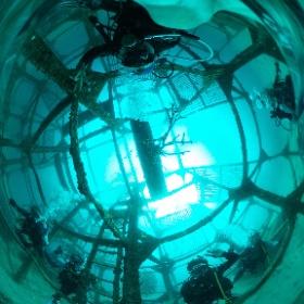 2019//11/17 初島ツアー #padi #diving #フリッパーダイブセンター #初島 #theta #theta_padi #theta360 #群馬 #伊勢崎 #ダイビングショップ #ダイビングスクール #ライセンス取得